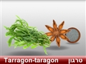 screenshot of Spices 3